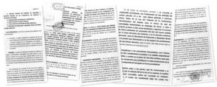 Ver Documento del tribunal contecioso para inspectores
